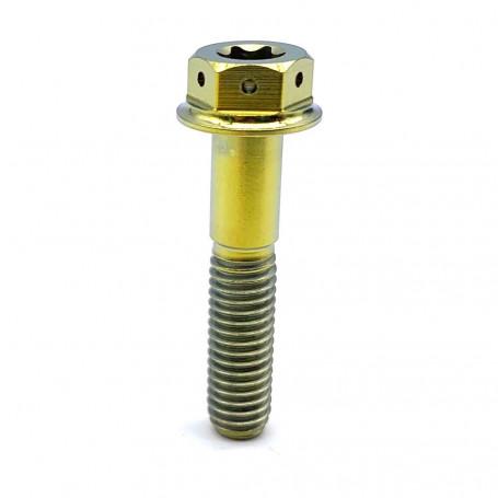 Titanium DualDrive 2 Torx Bolt M6 x (1.00mm) x 30mm